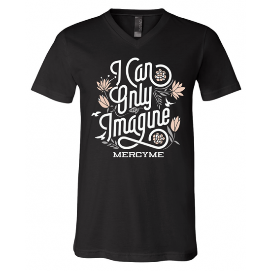 I Can Only Imagine Ladies Tee
